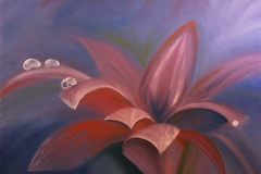 Morning Violet Flower