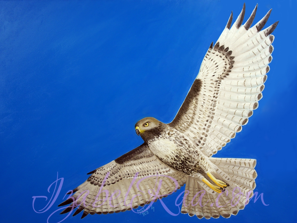 """Hawk's Flight"". Oil painting on canvas."