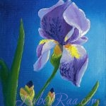 """Iris"". Oil painting on canvas panel."