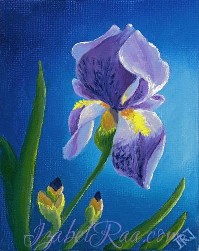 """""""Iris"""". Oil painting on canvas panel. © Izabel Raa, 2014"""