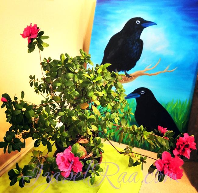 Ravens and gardenia :)